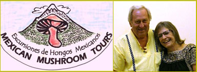 Mexican Mushroom Tours 2018